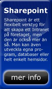 Sharepoint är ett flexibelt verktyg för att skapa ett intranet på företaget, men den är också mer än så. Man kan även utveckla egna program, databaser eller helt enkelt hemsidor.